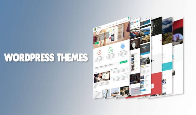 3 Great WordPress Themes for Your Business